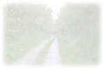 ist2_225987-muddy-country-road1