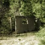 Mossig ruin